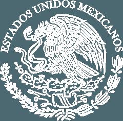 Top area Logo